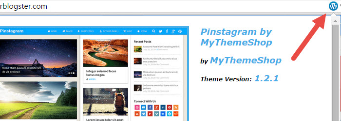 WordPress Theme and Plugins Detector